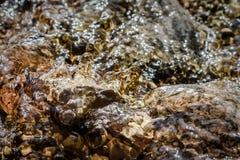 Закройте вверх по заводи воды плавая над камнями Стоковое фото RF