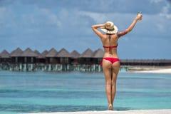 Закройте вверх по задней части девушки в бикини против пляжа и кокоса океана Стоковые Изображения