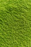 Закройте вверх по зеленой текстуре ватки Справочная информация Стоковые Фотографии RF