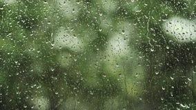Закройте вверх по изображению падений дождя понижаясь на окно акции видеоматериалы