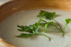 Закройте вверх по изображению пюра супа гриба с петрушкой Стоковое фото RF