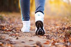 Закройте вверх по идущим ногам в тренерах. Стоковое Изображение RF