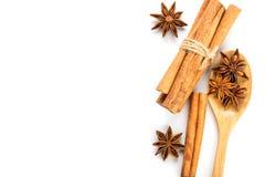 Закройте вверх по коричневой ручке циннамона с специей анисовки звезды в деревянном sp Стоковые Фото