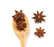 Закройте вверх по коричневой специи анисовки звезды в деревянной ложке изолированной дальше Стоковые Изображения