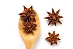 Закройте вверх по коричневой специи анисовки звезды в деревянной ложке изолированной дальше Стоковые Изображения RF