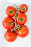 Закройте вверх по красному томату вишни на белой изолированной предпосылке Стоковое Фото