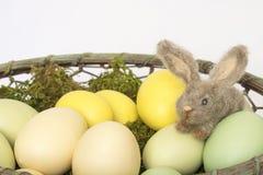 Закройте вверх по крошечному пушистому кролику зайчика в корзине бледных покрашенных яичек Стоковые Фотографии RF