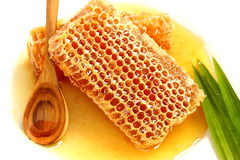 Закройте вверх по очень вкусному золотому соту на белой предпосылке. Запасите пэ-аш Стоковые Фотографии RF