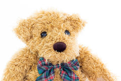 Закройте вверх по портрету плюшевого медвежонка на белизне Стоковая Фотография RF