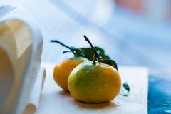 Закройте вверх по 2 свежим tangerines с листьями на белизне Стоковые Фотографии RF