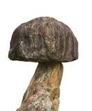 Закройте вверх по статуе гриба на белой предпосылке Стоковые Фотографии RF