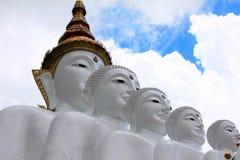 Закройте вверх по съемке голов 5 сидя белое Buddhas на Pha Sorn Kaew, в Khao Kor, Phetchabun, Таиланд стоковые изображения rf