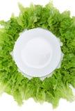 Закройте вверх по съемке пустых плиты и салата вокруг Стоковое фото RF