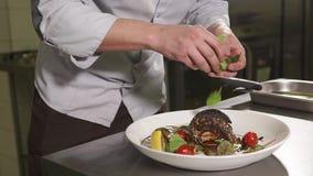 Закройте вверх по съемке рук ` s шеф-повара, человек украшает сваренные блюда листвы акции видеоматериалы