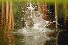 Закройте вверх по съемке стопа выплеска снятой на воде Стоковые Изображения RF