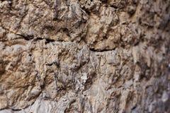 Закройте вверх по текстурированной предпосылке стены средневекового каменного masonry Стена небрежное построенная камней горы сре стоковые фотографии rf