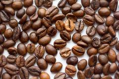 Закройте вверх по фасолям на белой предпосылке Кофе весь экран для Зажаренный в духовке коричневый цвет Серии в определения макси Стоковые Фотографии RF