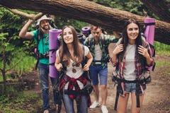 Закройте вверх по фото 4 друзей наслаждаясь красотой природы, пеший туризм в одичалом лесе, ища славное место для лагеря, усмехая стоковое фото