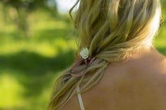 Закройте вверх по фото от задней части белокурых волос девушки с цветком b Стоковое Изображение RF