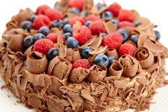 Закройте вверх по шоколадному торту с одичалыми ягодами Стоковое Изображение RF