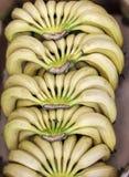 Закройте вверх пука банана в клетке ротанга Стоковое Изображение RF
