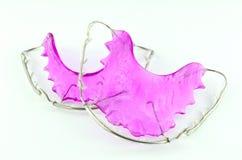 Закройте вверх пурпуровых зубоврачебных изолированных расчалок Стоковая Фотография