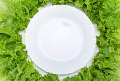 Закройте вверх пустых плиты и салата вокруг Стоковое Изображение RF