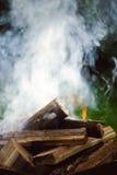 Закройте вверх пламен лагерного костера Стоковое Изображение
