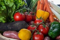Закройте вверх различных сезонных овощей стоковое изображение rf