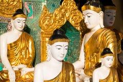 Закройте вверх различного определенного размер золотого Buddhas стоковое фото