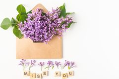 Закройте вверх раскрытого конверта бумаги ремесла заполненного при цветки сирени цветения весны фиолетовые кладя на белую предпос стоковое фото rf