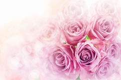 Закройте вверх розового букета цветка с предпосылкой bokeh нерезкости Стоковые Фото