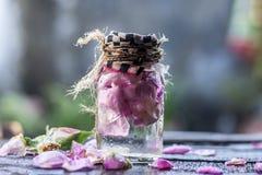 Закройте вверх розовой воды Стоковое Изображение