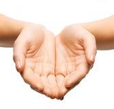 Закройте вверх рук женщины приданных форму чашки Стоковое Фото
