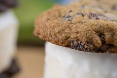 Закройте вверх сандвича мороженого печенья обломока шоколада Стоковые Фото