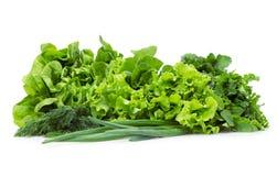 Закройте вверх салата, луков весны и зеленых цветов Стоковое Изображение