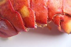 Сваренный кабель омара Стоковые Фото