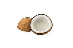 Закройте вверх свежего кокоса Стоковое Изображение