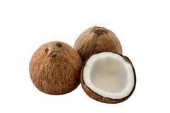 Закройте вверх свежего кокоса Стоковые Фото