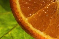 Закройте вверх сочного апельсина с зеленой предпосылкой лист Стоковые Изображения RF