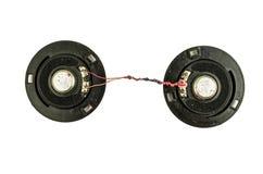 Закройте вверх стандарта электрического кабеля дикторов на белой предпосылке Поперечное сечение в белой предпосылке Стоковое Фото