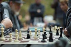 Закройте вверх старших людей играя шахмат Стоковое Изображение RF