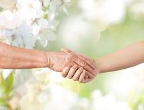 Закройте вверх старшия и молодой женщины держа руки Стоковые Фото