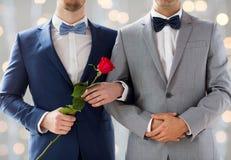 Закройте вверх счастливых мужских пар гомосексуалиста держа руки Стоковые Фото