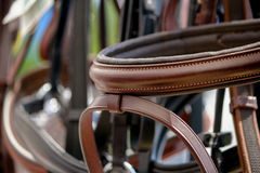 Закройте вверх уздечек лошади на стеллаже для выставки товаров стоковое изображение