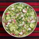 Закройте вверх украинского холодного okroshka овощного супа Стоковое Фото