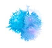 закройте вверх ходов цвета воды крася на белизне Стоковые Изображения