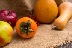 Закройте вверх хурмы около сбора красных яблок, груши, рябины Стоковое Изображение