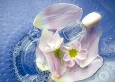 Закройте вверх цветков и лепестков первоцвета плавая в шар воды с бутылкой дух тема спы frangipani цветка шара Стоковое фото RF