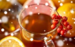Закройте вверх чашки чая с rowanberry Стоковая Фотография